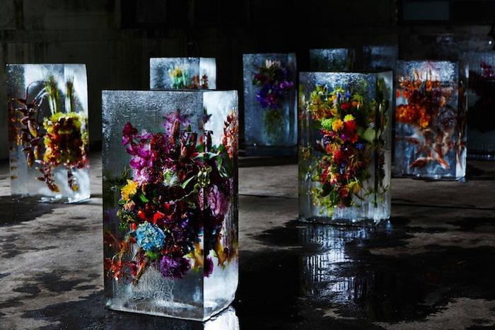 Цветы во льду: инсталляция от Макото Азума (Makoto Azuma)