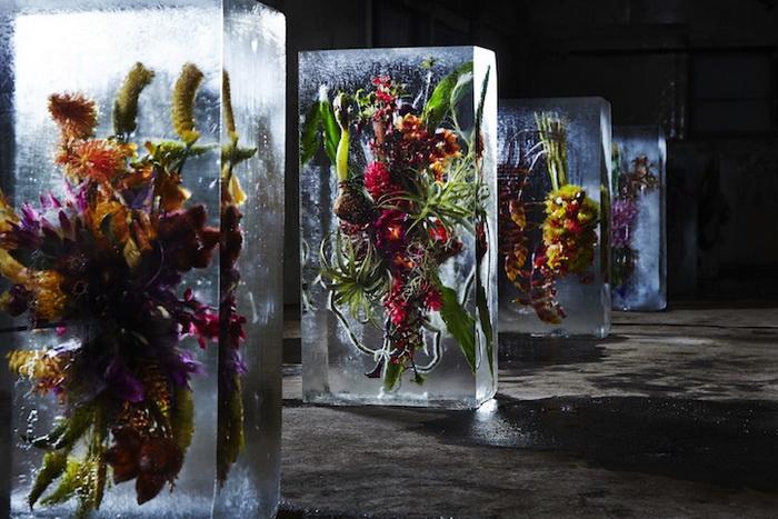 Ice Flowers: инсталляция от Макото Азума (Makoto Azuma)