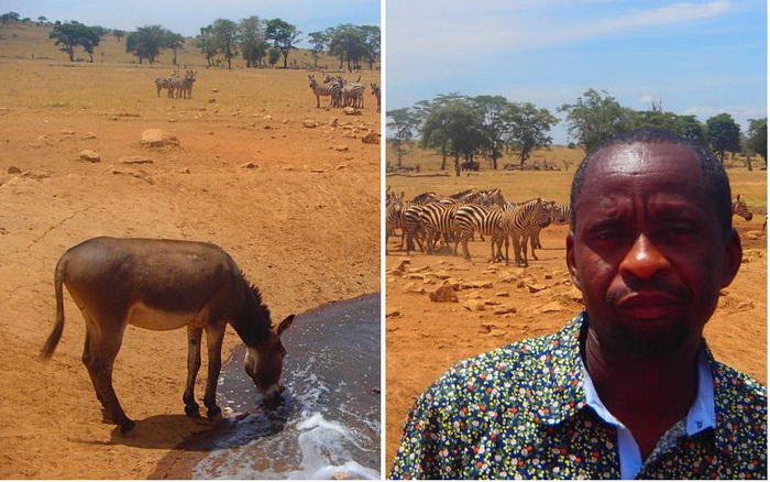 Мужчина привозит воду животным в Национальный парк Тсаво (Кения)