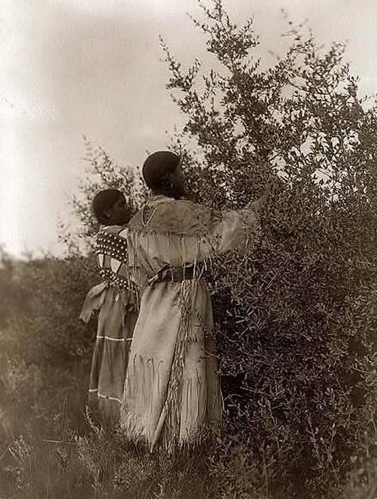 Женщины из племени мандан