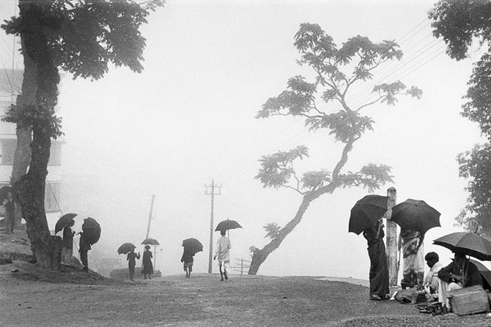 Индия, 1956 год. Туманный Дарджилинг