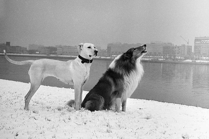 Ленинград. 1977 год.