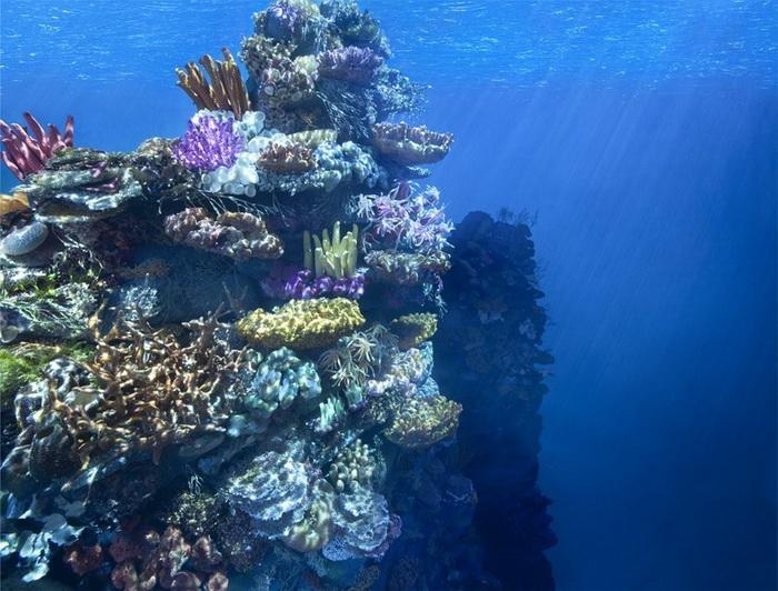Диорама *Как дышать под водой*