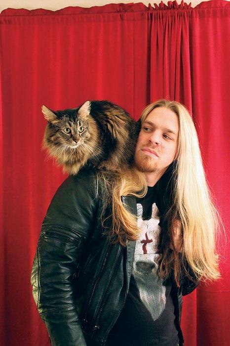 Рокеры и их коты