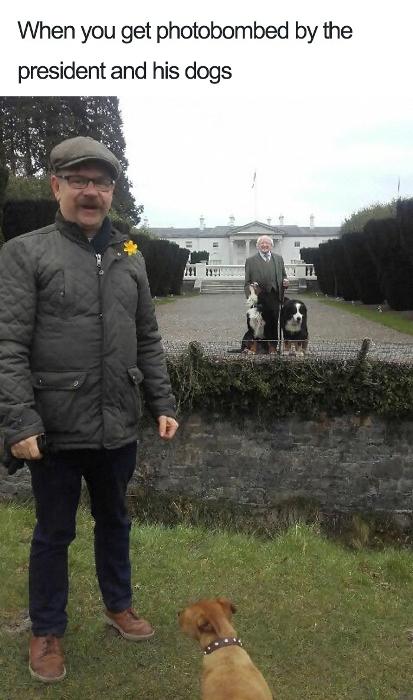 Фотография прохожего с президентом, который выгуливает собак.