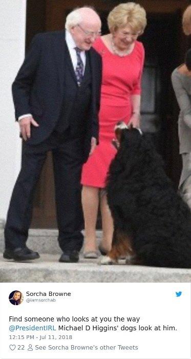 Собаки смотрят на президента с обожанием.