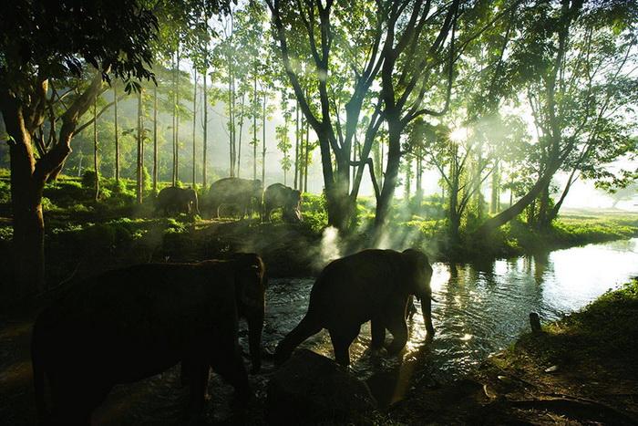 Чиангмай, Таиланд. Фотографии путешественника Майкла Лоффера (Michael Loffer)