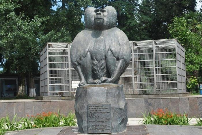 Памятник бабуину.