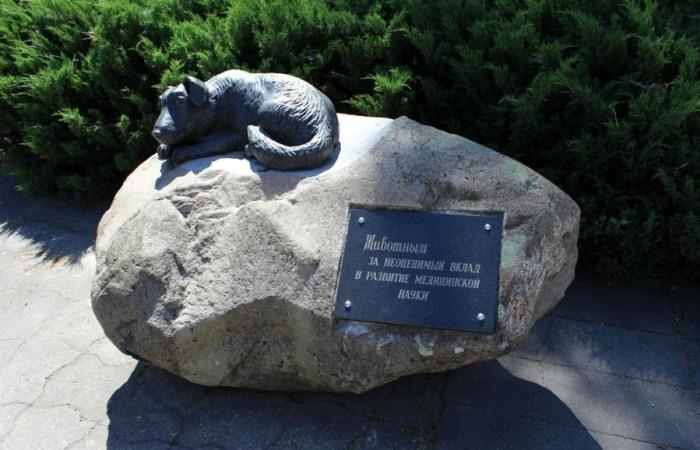 Памятник животным за неоценимый вклад в развитие медицинской науки.
