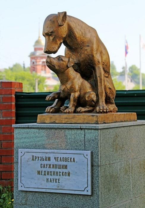Памятник друзьям человека, служившим медицинской науке.