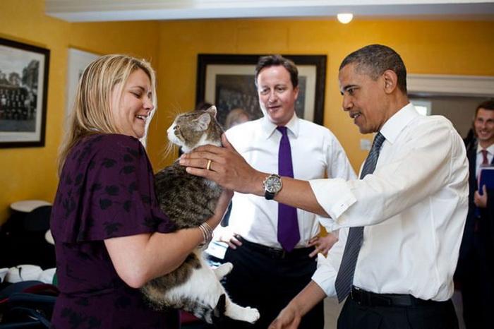 Ларри на встрече с американским президентом Бараком Обамой.