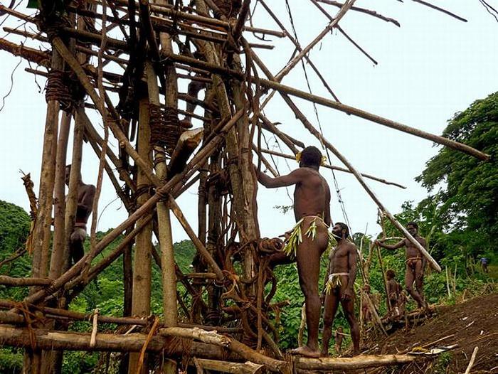 При строительстве ритуальной башни используются ветки деревьев и лианы