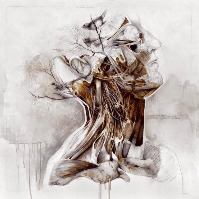 Рисунки-чертежи от Нунцио Пачи (Nunzio Paci)