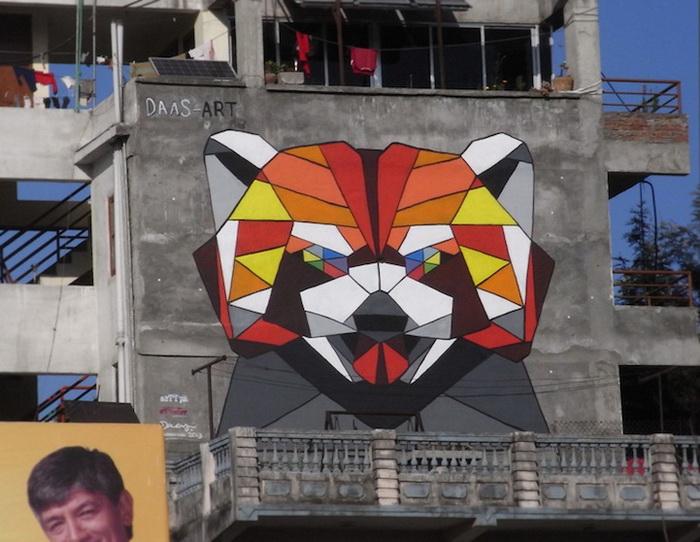 Малая панда от художника Daas (Катманду, Непал)