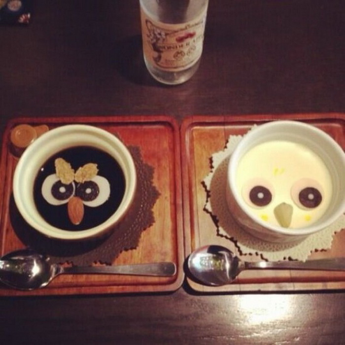 Совиные кафе - писк моды в Японии