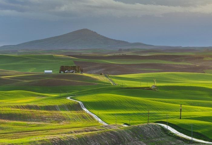 Живописные пейзажи региона Palouse, США