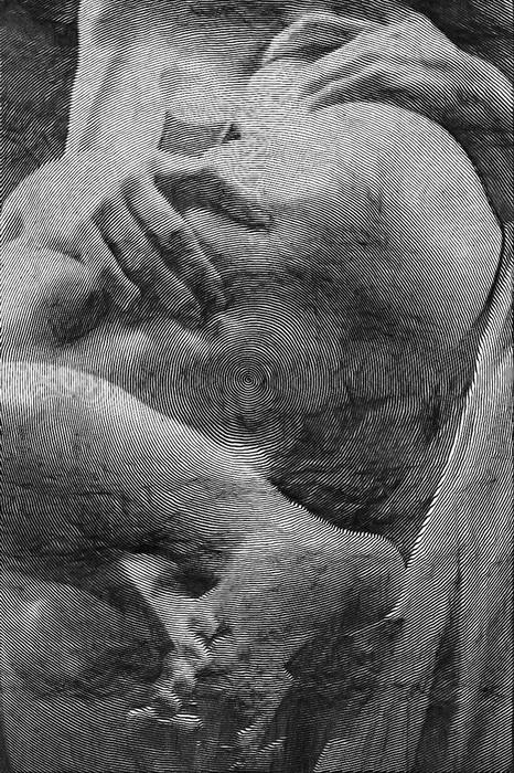 Рисунки Paolo Ceric выполнены при помощи одной спиралевидной линии