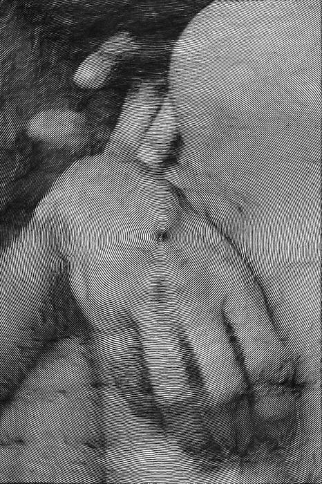 Рисунки Paolo Ceric выполнены при помощи специальной компьютерной программы