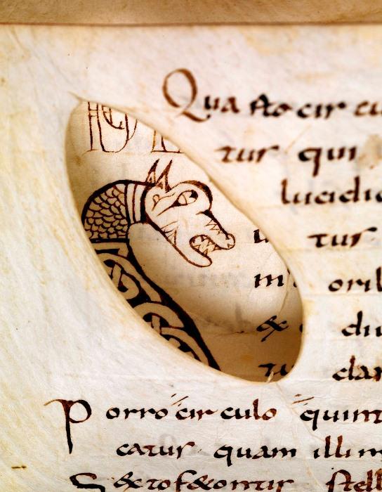 Рисунок дракона на следующей странице расположен симметрично разрезу.