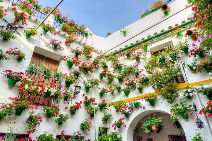 Фестиваль цветов в Кордове (Испания)