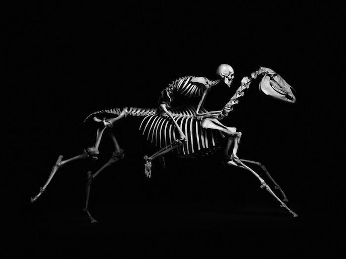 Эволюция: фотоцикл от Патрика Гриса (Patrick Gries