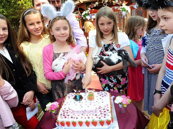 Свадебный торт на кроличьем торжестве