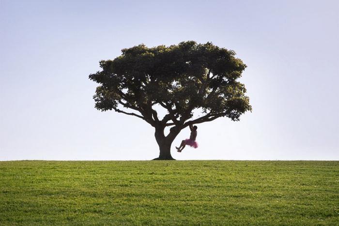 Для Боба Кэри не проблема даже залезть на дерево