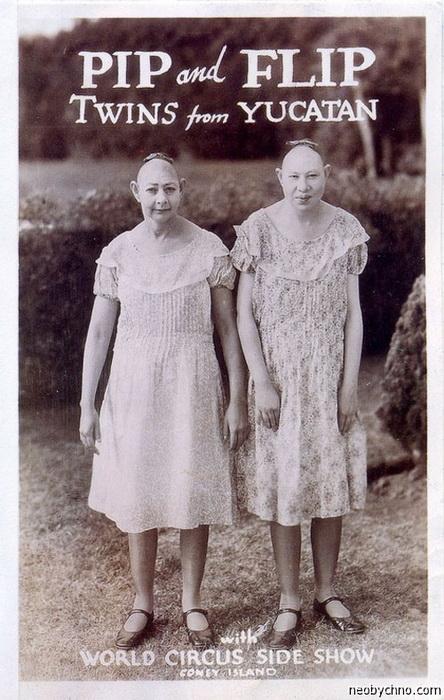 Цирковая афиша: близняшки из Юкатана