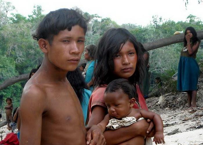 Моногамные семьи пираха