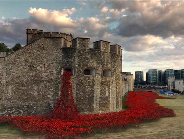 Лондонская инсталляция в память о Первой мировой войне