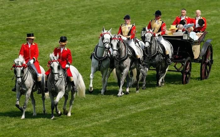 Королевский экипаж прибыл на скачки.