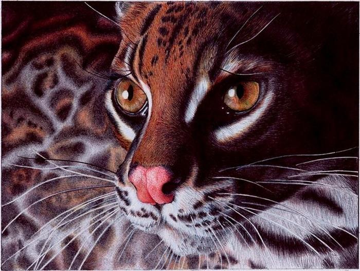 Завораживающие животные нарисунках Самуэля Сильвы