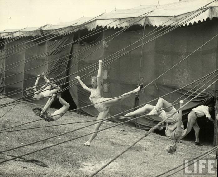 Цирк голый фото 97155 фотография