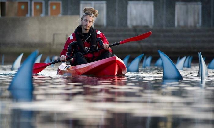 Акульи плавники: инсталляция от Greenpeace в Новой Зеландии
