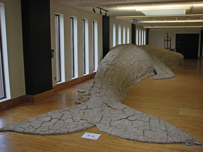 Скульптуры животных из мокрой глины от Shay Church