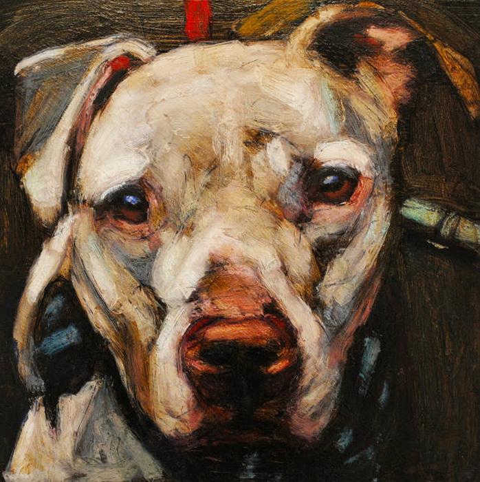 Душещипательные портреты собак от Марка Барона
