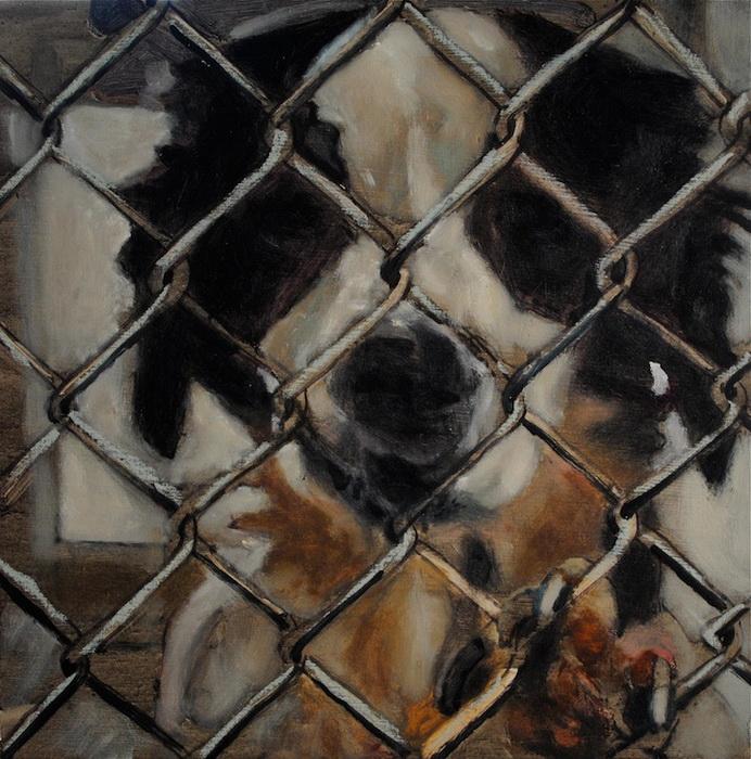 Марк Барон планирует нарисовать 5500 портретов бездомных собак