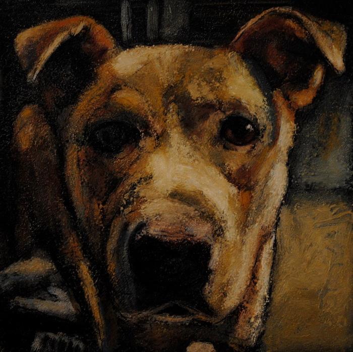 Марк Барон рисует собак, которые ежедневно умирают в приютах в США