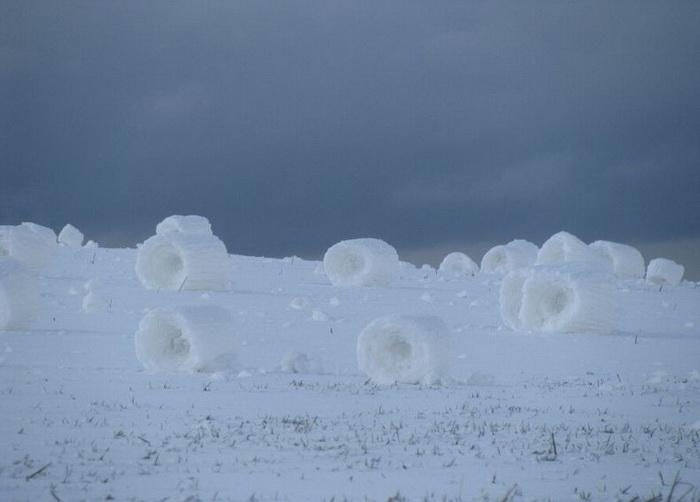 Снежные рулоны - зимний природный феномен