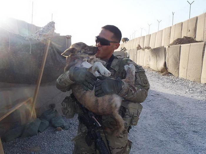 Лучшие друзья: солдаты и их верные питомцы