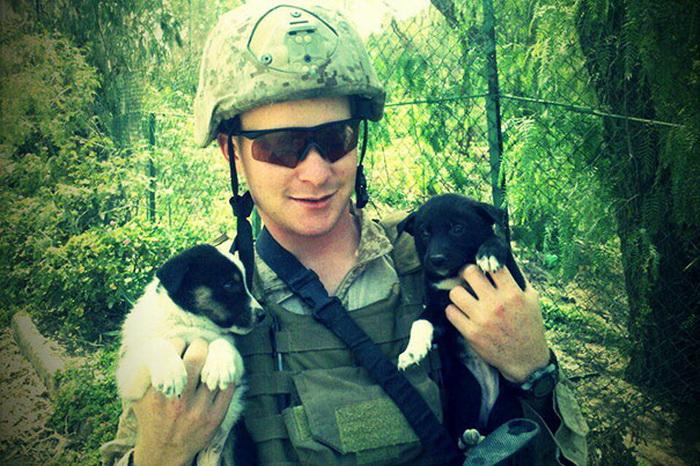 Солдат с щенками в Йемене