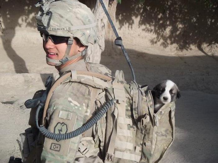 Солдат со спасенным щенком