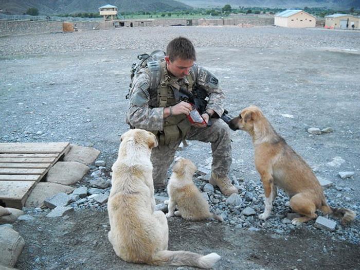 Солдат со своими лучшими друзьями