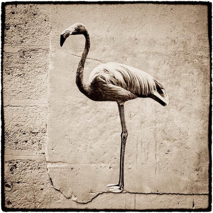 Стрит-арт на улицах Парижа от Sophie