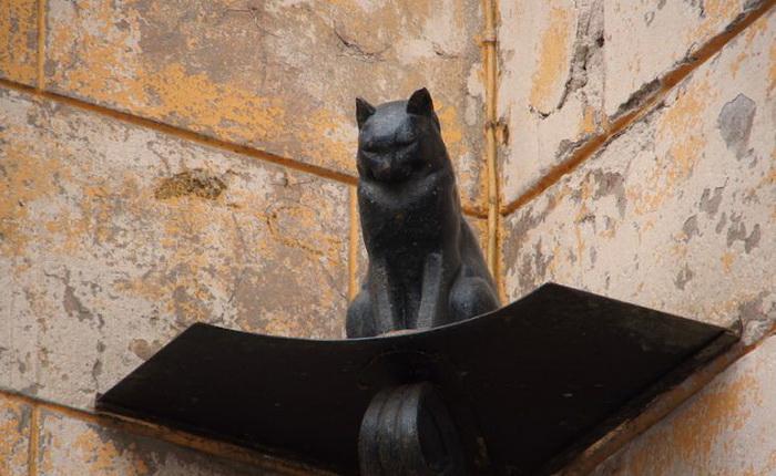 Кот Елисей - памятник ярославским кошкам
