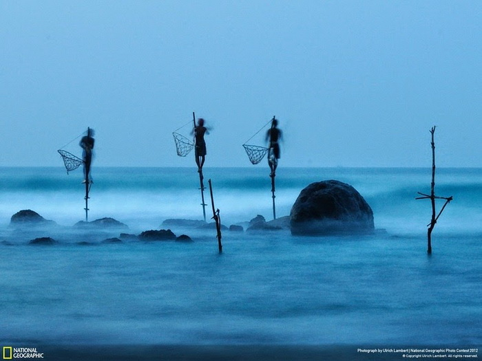 Рыбалка на сваях: необычный аттракцион на острове Шри-Ланка