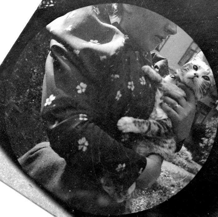 Фотографии, сделанные скрытой камерой.