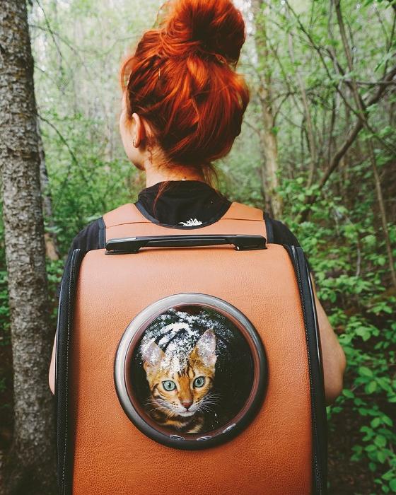 Хозяйка кошки использует специальный рюкзак для путешествий.