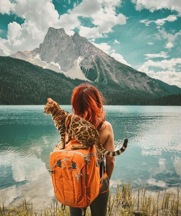 Живописные фотографии на лоне природы.