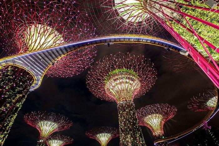 Удивительные железные *деревья* в Сингапуре